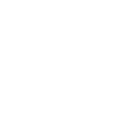 Logo Fight Night